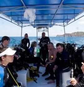 Herradura Divers